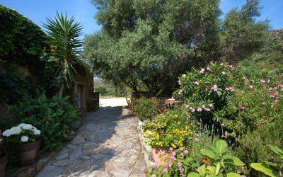 Stage Vitalité & Bien-être en Corse – avril 2017